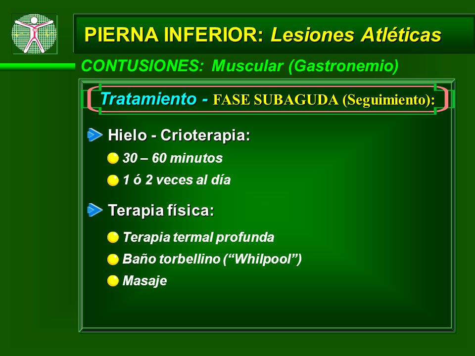 PIERNA INFERIOR: Lesiones Atléticas CONTUSIONES: Muscular (Gastronemio) Tratamiento - FASE SUBAGUDA (Seguimiento): Hielo - Crioterapia: Terapia física: 30 – 60 minutos 1 ó 2 veces al día Terapia termal profunda Baño torbellino (Whilpool) Masaje