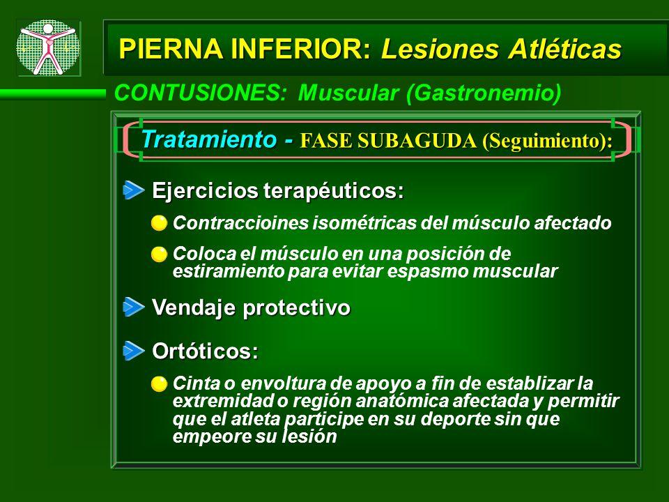 PIERNA INFERIOR: Lesiones Atléticas CONTUSIONES: Muscular (Gastronemio) Tratamiento - FASE SUBAGUDA (Seguimiento): Ejercicios terapéuticos: Vendaje pr