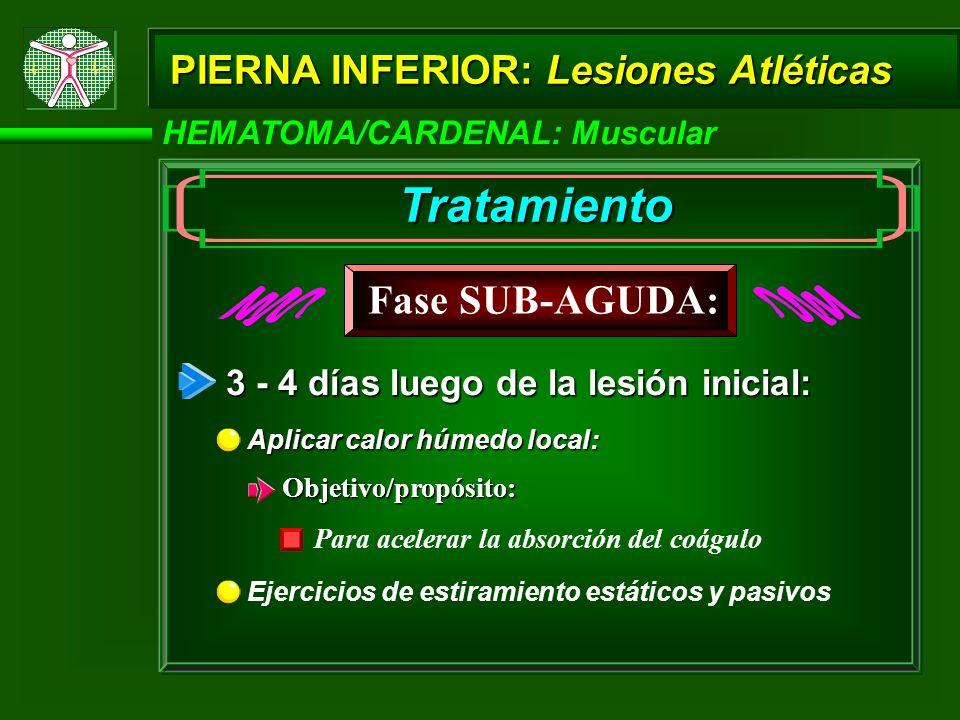 HEMATOMA/CARDENAL: Muscular PIERNA INFERIOR: Lesiones Atléticas Tratamiento 3 - 4 días luego de la lesión inicial: Ejercicios de estiramiento estáticos y pasivos Aplicar calor húmedo local: Fase SUB-AGUDA: Objetivo/propósito: Para acelerar la absorción del coágulo