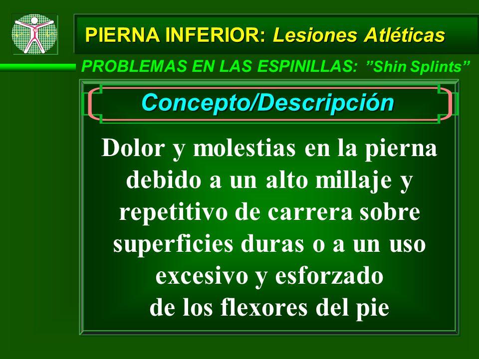PIERNA INFERIOR: Lesiones Atléticas PROBLEMAS EN LAS ESPINILLAS: Shin Splints Concepto/Descripción Dolor y molestias en la pierna debido a un alto mil