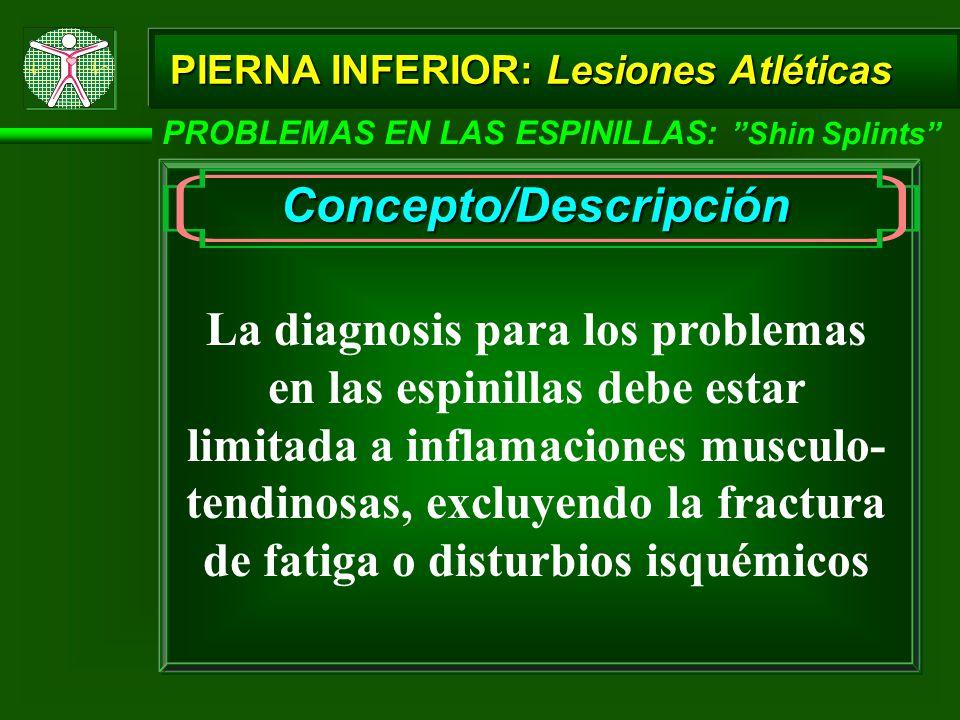 PIERNA INFERIOR: Lesiones Atléticas PROBLEMAS EN LAS ESPINILLAS: Shin Splints Concepto/Descripción La diagnosis para los problemas en las espinillas debe estar limitada a inflamaciones musculo- tendinosas, excluyendo la fractura de fatiga o disturbios isquémicos
