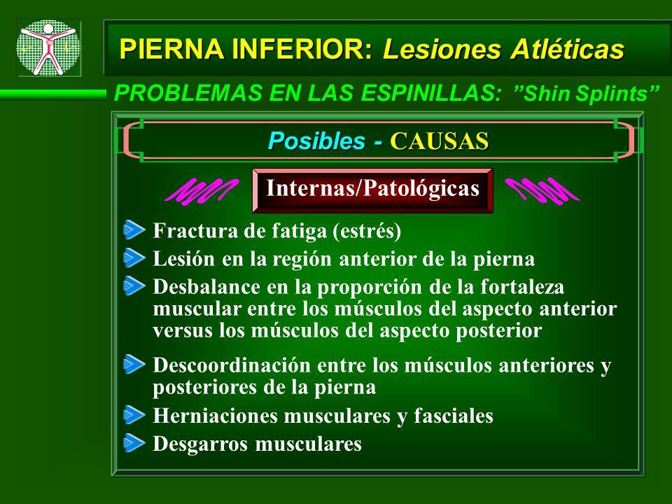 PIERNA INFERIOR: Lesiones Atléticas PROBLEMAS EN LAS ESPINILLAS: Shin Splints Posibles - CAUSAS Internas/Patológicas Herniaciones musculares y fascial