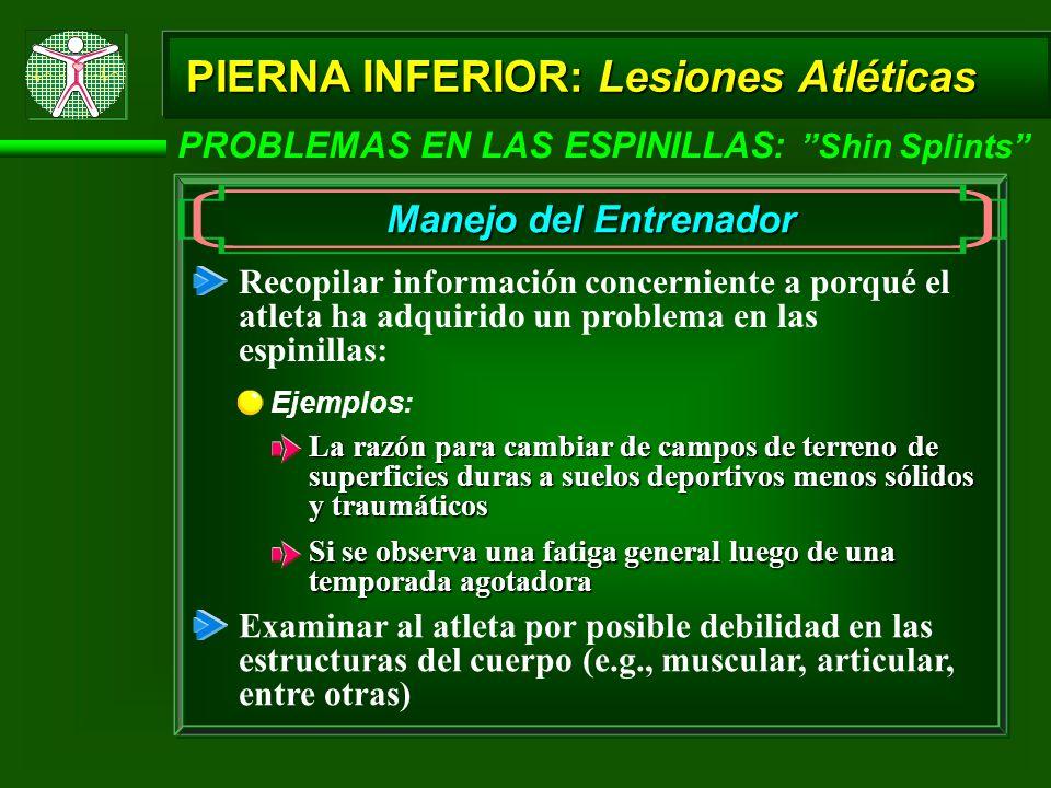 PIERNA INFERIOR: Lesiones Atléticas PROBLEMAS EN LAS ESPINILLAS: Shin Splints Manejo del Entrenador Recopilar información concerniente a porqué el atl