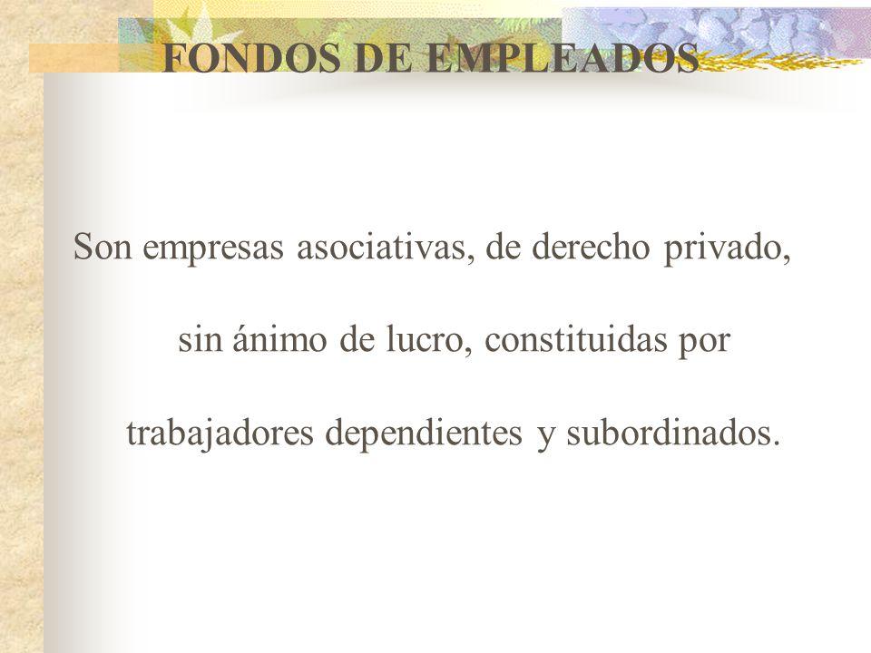 EMPRESAS DE SERVICIOS EN FORMAS DE ADMINISTRACIONES PÚBLICAS COOPERATIVAS Son entidades de carácter cooperativo creadas por iniciativa de la Nación, l