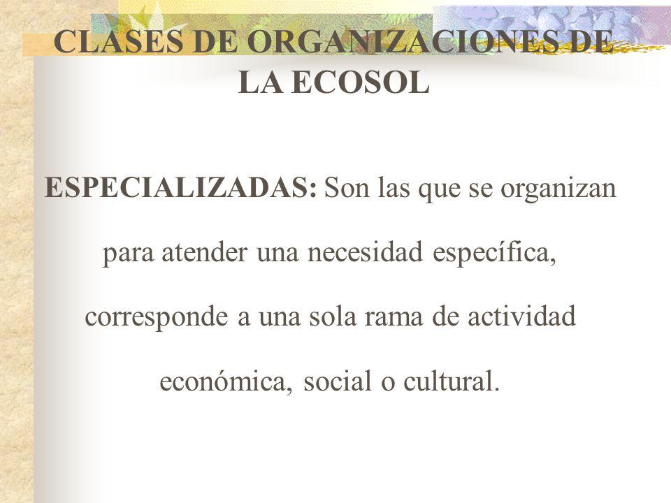 CLASES DE ORGANIZACIONES DE LA ECOSOL ESPECIALIZADAS MULTIACTIVAS INTEGRALES