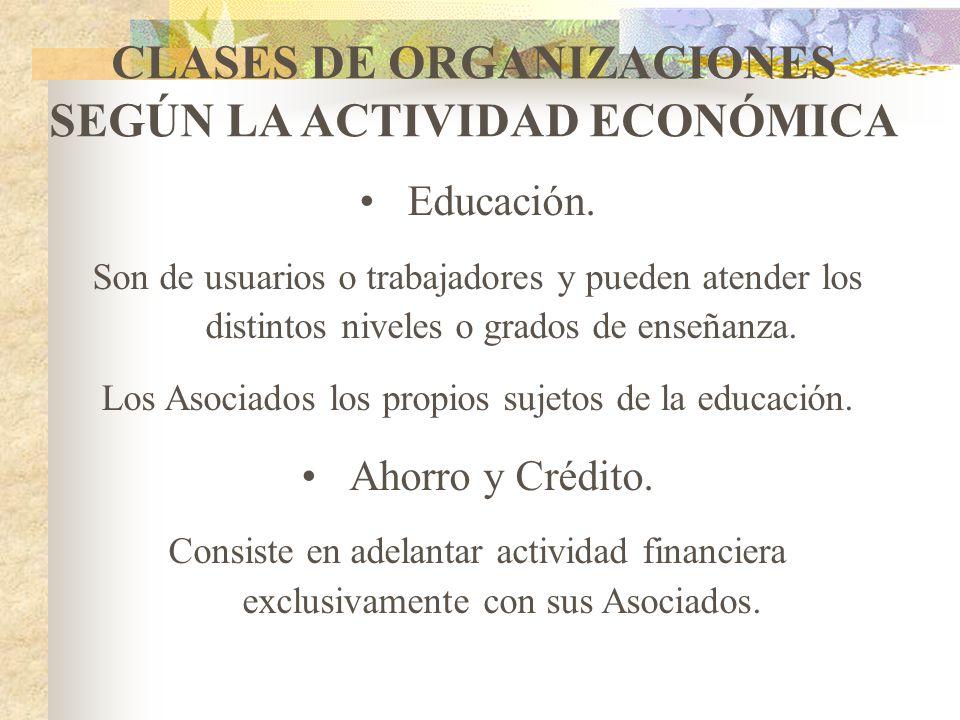 CLASES DE ORGANIZACIONES SEGÚN LA ACTIVIDAD ECONÓMICA Producción. Genera y apropia teoría para la transformación de insumos que permiten involucrar un