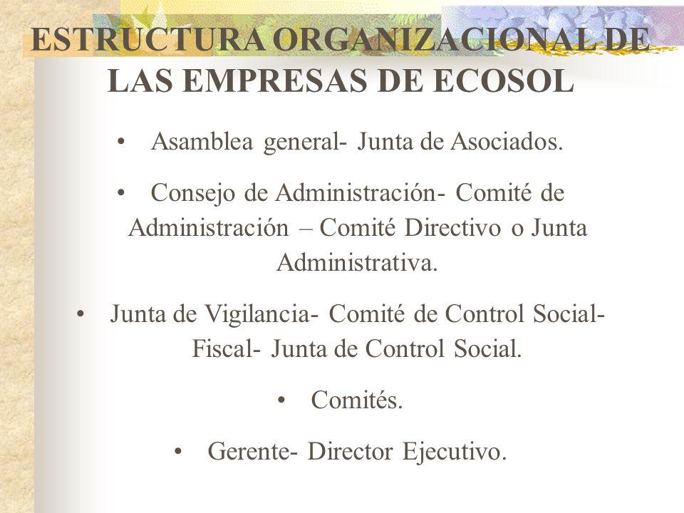 CLASES DE ORGANIZACIONES SEGÚN LA ACTIVIDAD ECONÓMICA Cooperativas Multiactivas o Integrales con sección de ahorro y crédito. Atienden varios servicio