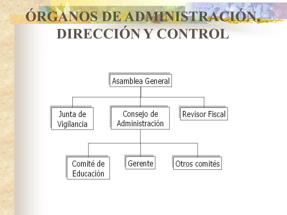 ESTRUCTURA ORGANIZACIONAL DE LAS EMPRESAS DE ECOSOL Asamblea general- Junta de Asociados. Consejo de Administración- Comité de Administración – Comité
