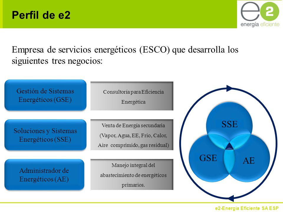 e2-Energía Eficiente SA ESP Estado actual de la empresa colombiana en gestión de la eficiencia energética.