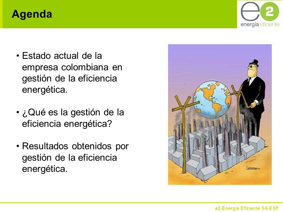 e2-Energía Eficiente SA ESP Qué nos mueve hacia la eficiencia energética.