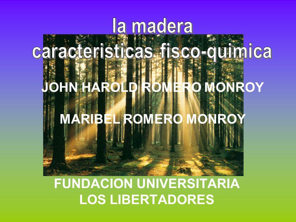 JOHN HAROLD ROMERO MONROY MARIBEL ROMERO MONROY FUNDACION UNIVERSITARIA LOS LIBERTADORES