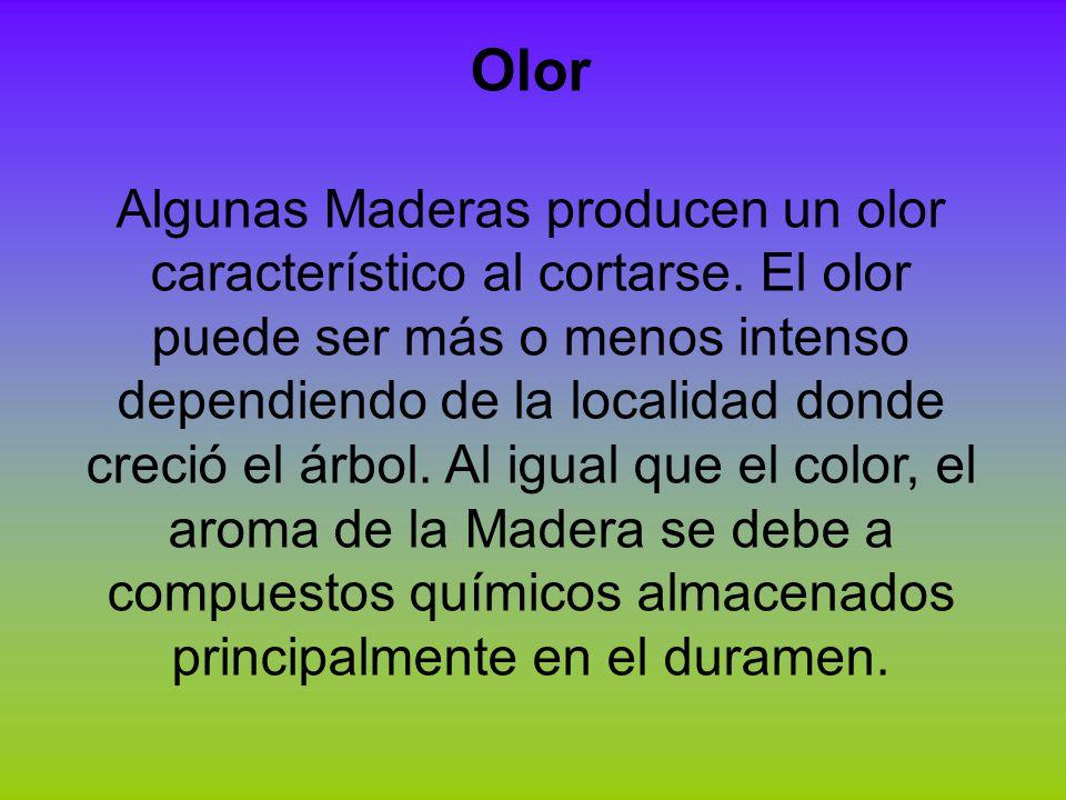 Olor Algunas Maderas producen un olor característico al cortarse. El olor puede ser más o menos intenso dependiendo de la localidad donde creció el ár