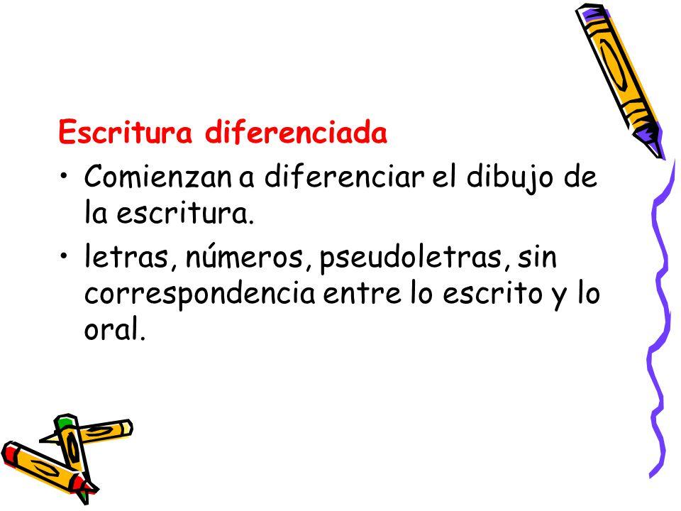 Escritura diferenciada Comienzan a diferenciar el dibujo de la escritura. letras, números, pseudoletras, sin correspondencia entre lo escrito y lo ora