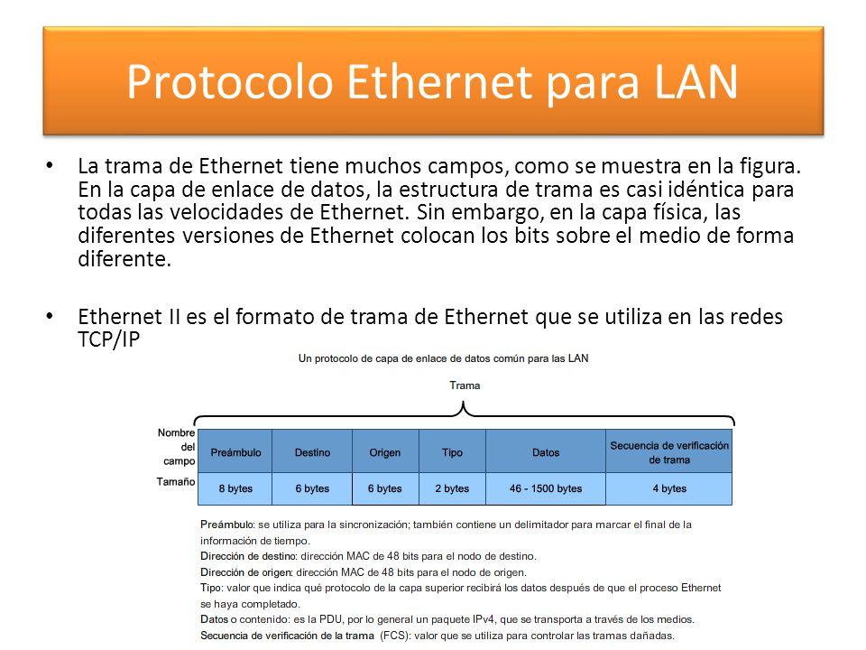 La trama de Ethernet tiene muchos campos, como se muestra en la figura. En la capa de enlace de datos, la estructura de trama es casi idéntica para to