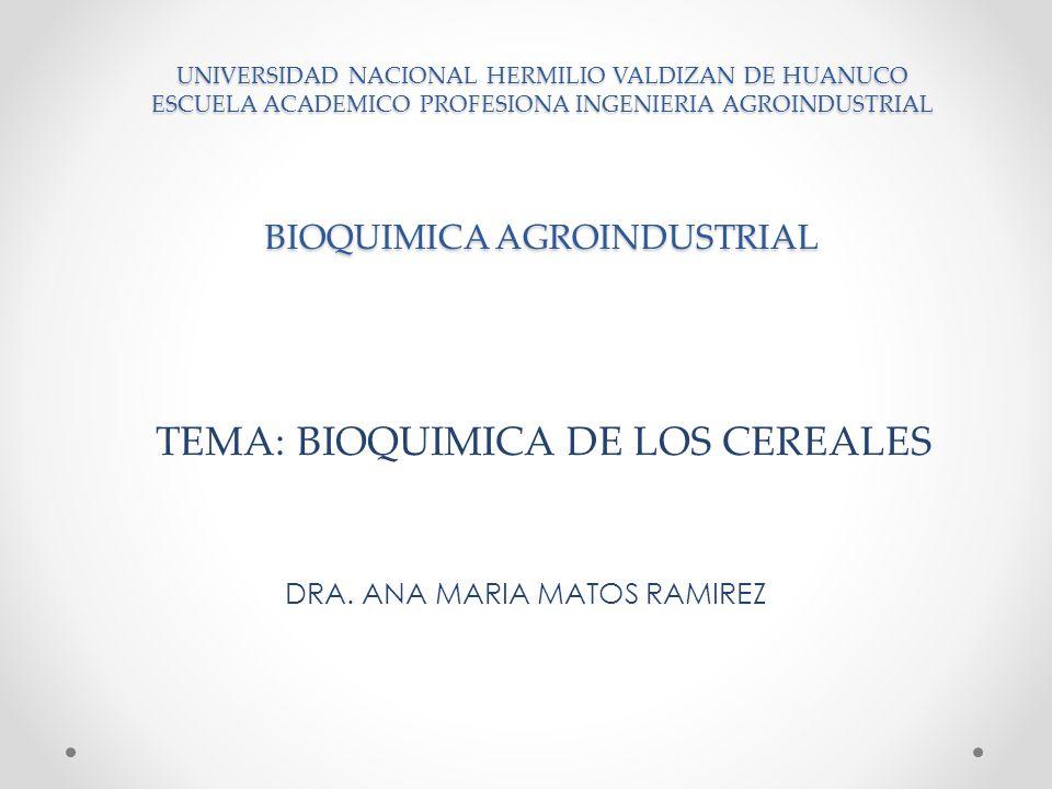 UNIVERSIDAD NACIONAL HERMILIO VALDIZAN DE HUANUCO ESCUELA ACADEMICO PROFESIONA INGENIERIA AGROINDUSTRIAL BIOQUIMICA AGROINDUSTRIAL DRA. ANA MARIA MATO