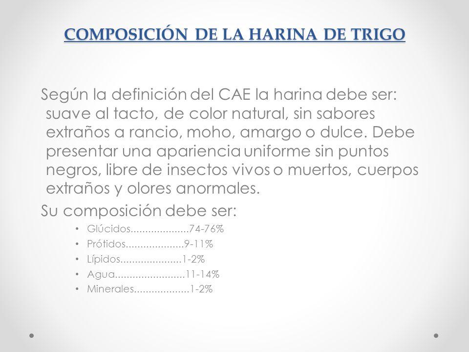 COMPOSICIÓN DE LA HARINA DE TRIGO Según la definición del CAE la harina debe ser: suave al tacto, de color natural, sin sabores extraños a rancio, moh