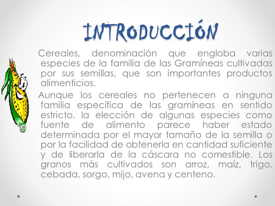 INTRODUCCIÓN INTRODUCCIÓN Cereales, denominación que engloba varias especies de la familia de las Gramíneas cultivadas por sus semillas, que son impor