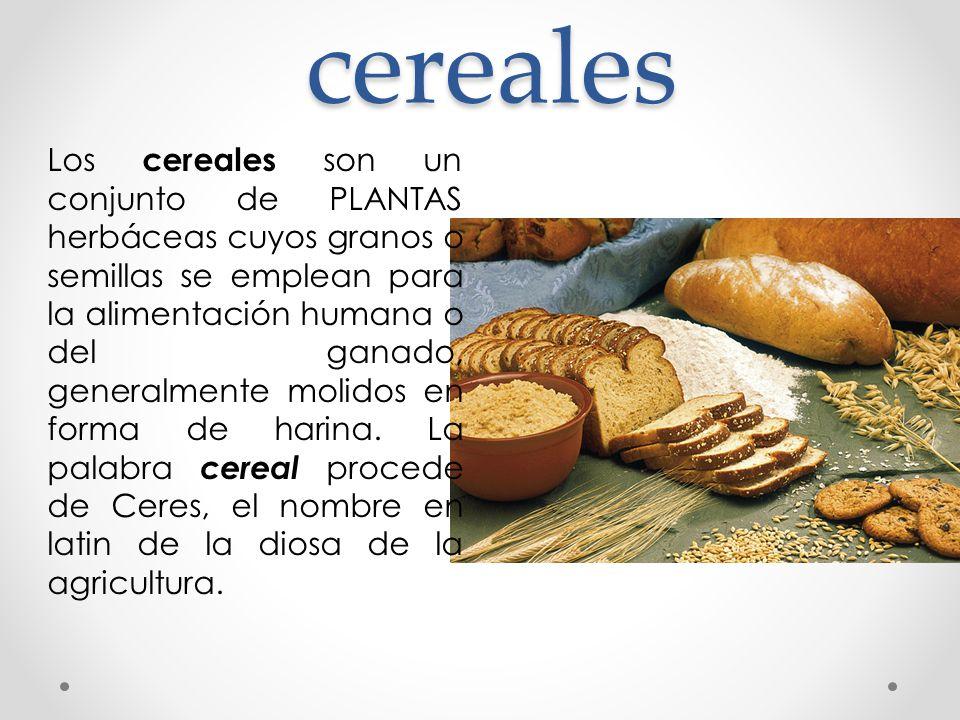 cereales Los cereales son un conjunto de PLANTAS herbáceas cuyos granos o semillas se emplean para la alimentación humana o del ganado, generalmente m