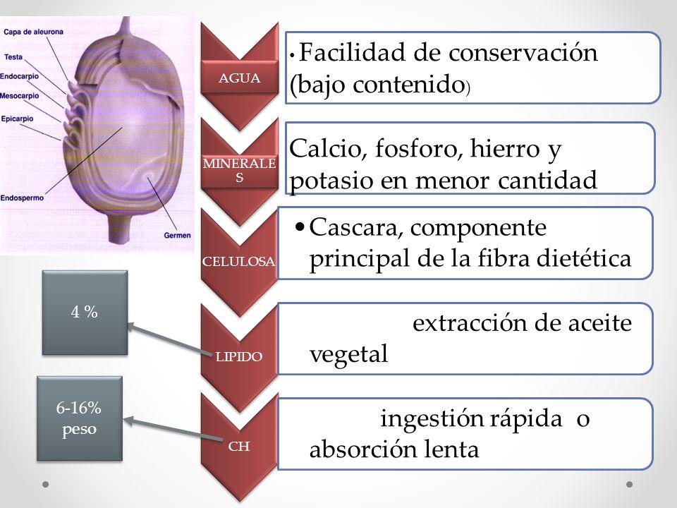 CELULOSA Cascara, componente principal de la fibra dietética LIPIDO Germen, extracción de aceite vegetal CH Fibra, ingestión rápida o absorción lenta
