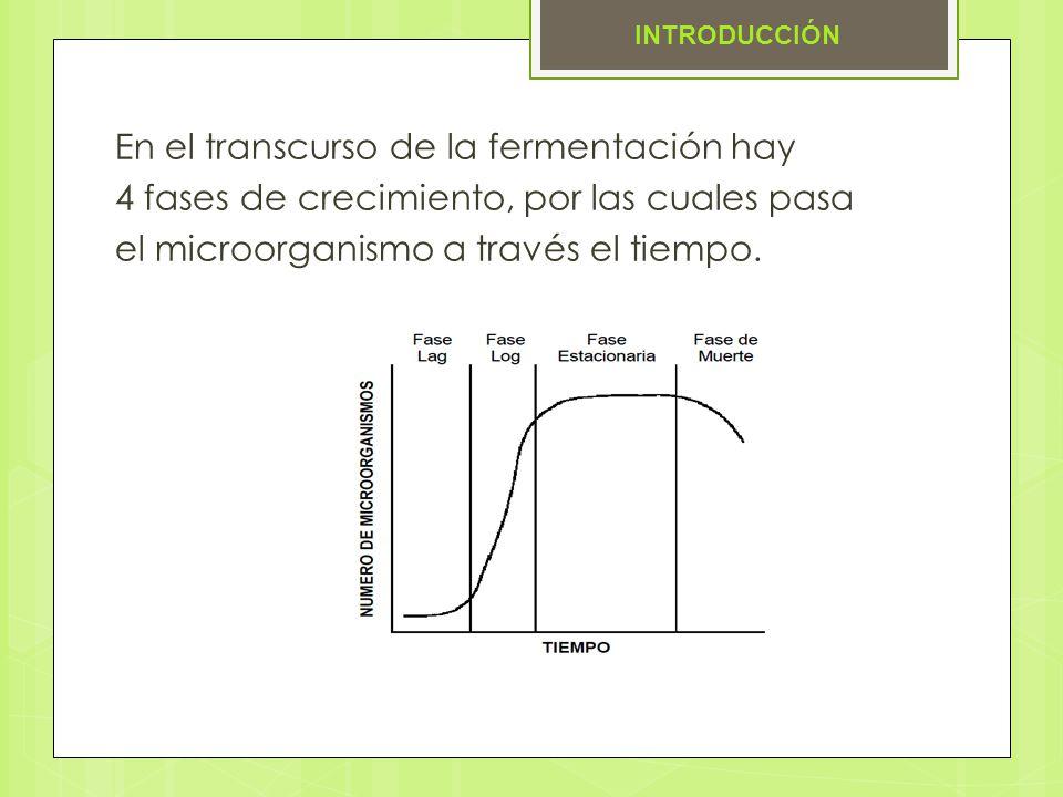 En el transcurso de la fermentación hay 4 fases de crecimiento, por las cuales pasa el microorganismo a través el tiempo. INTRODUCCIÓN