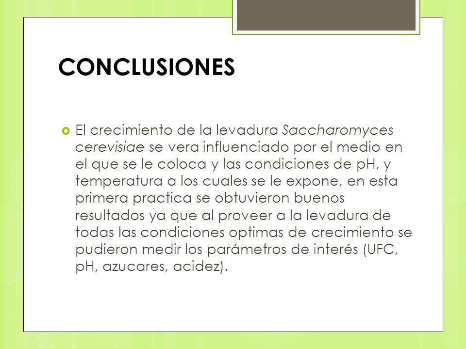 CONCLUSIONES El crecimiento de la levadura Saccharomyces cerevisiae se vera influenciado por el medio en el que se le coloca y las condiciones de pH,