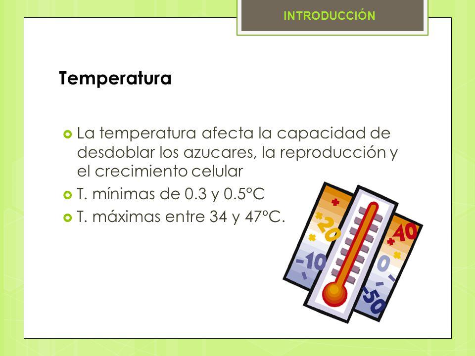 Temperatura La temperatura afecta la capacidad de desdoblar los azucares, la reproducción y el crecimiento celular T. mínimas de 0.3 y 0.5°C T. máxima