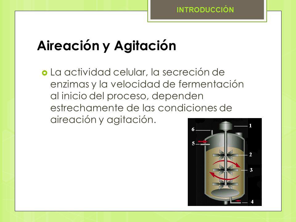 Aireación y Agitación La actividad celular, la secreción de enzimas y la velocidad de fermentación al inicio del proceso, dependen estrechamente de la