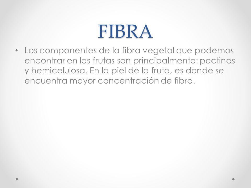 FIBRA Los componentes de la fibra vegetal que podemos encontrar en las frutas son principalmente: pectinas y hemicelulosa. En la piel de la fruta, es
