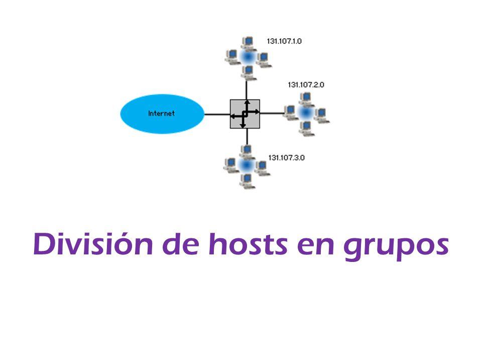 División de hosts en grupos