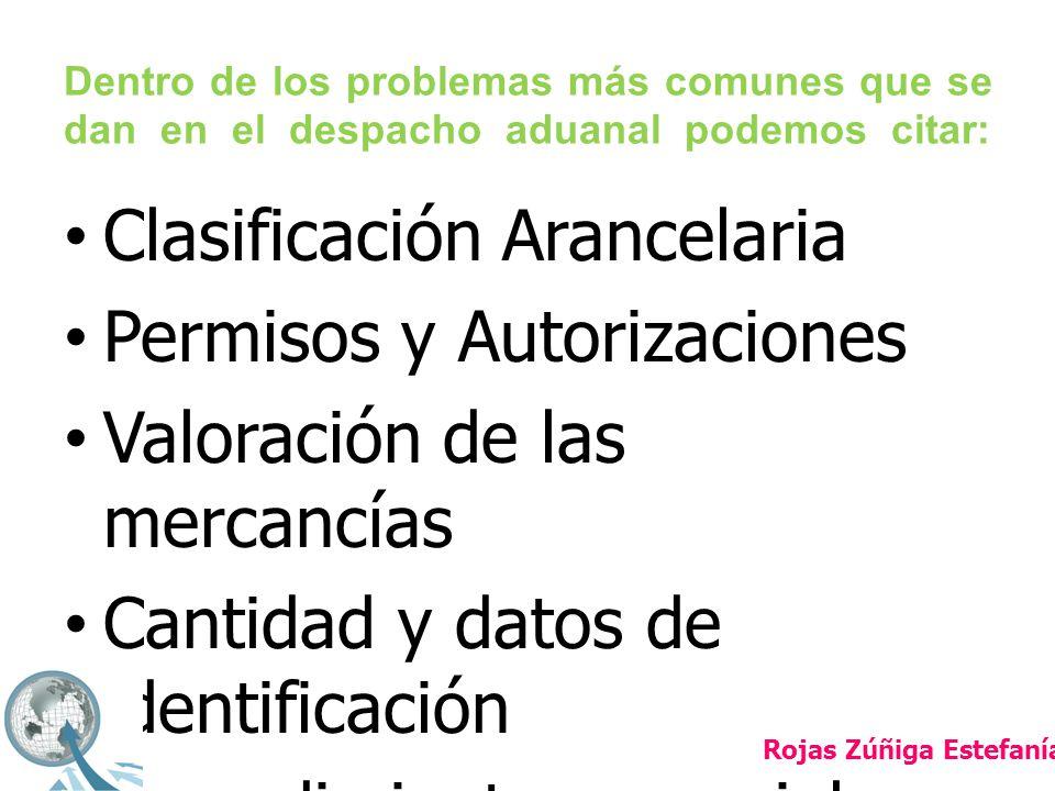 AUDITORIA ADUANERA Rojas Zúñiga Estefanía