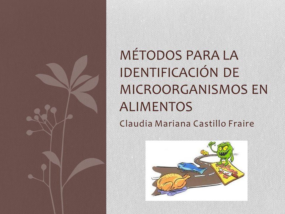 Claudia Mariana Castillo Fraire MÉTODOS PARA LA IDENTIFICACIÓN DE MICROORGANISMOS EN ALIMENTOS
