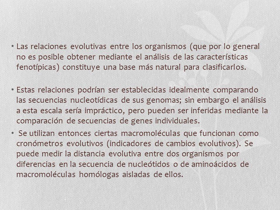 Las relaciones evolutivas entre los organismos (que por lo general no es posible obtener mediante el análisis de las características fenotípicas) constituye una base más natural para clasificarlos.