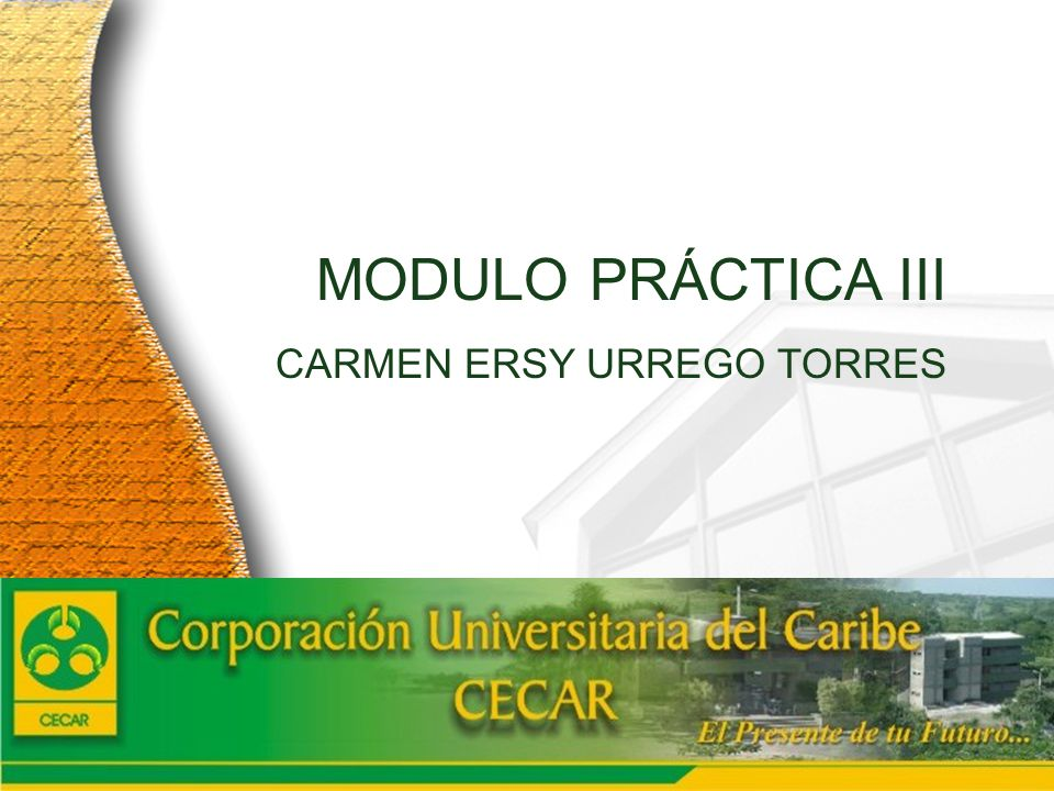 www.ceat.cl MODULO PRÁCTICA III CARMEN ERSY URREGO TORRES 2005 Cuenta Anual Cuenta anual detallada en www.ceat.cl