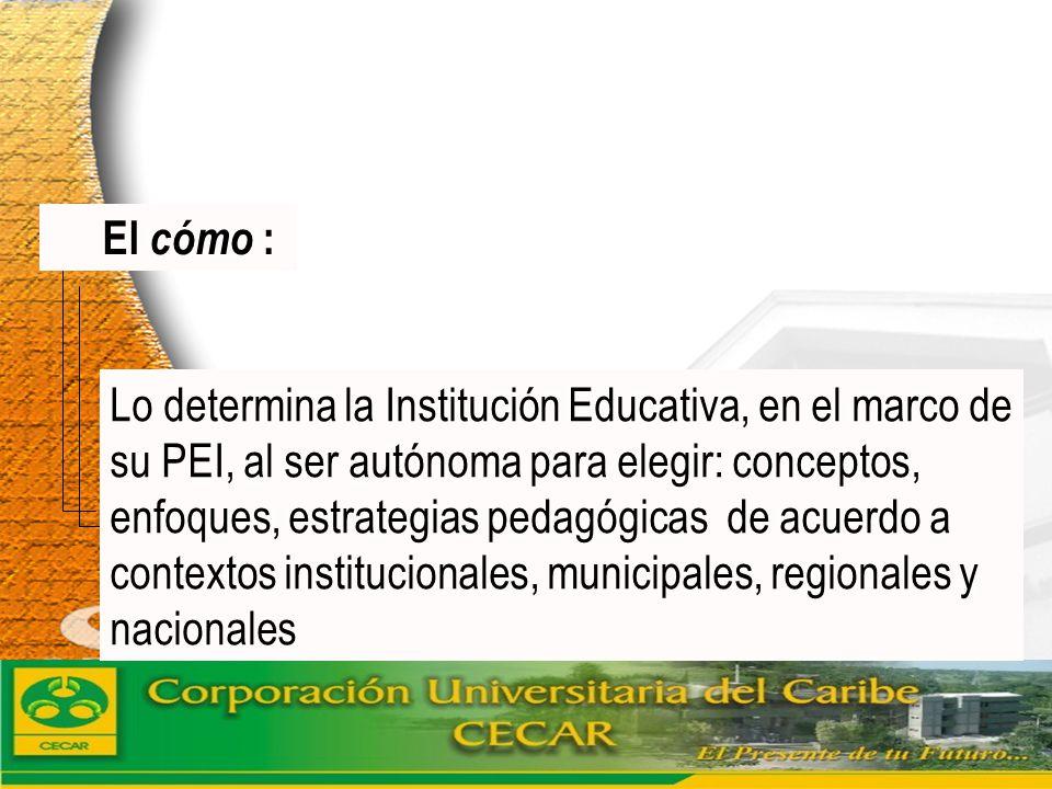 www.ceat.cl El cómo : Lo determina la Institución Educativa, en el marco de su PEI, al ser autónoma para elegir: conceptos, enfoques, estrategias peda
