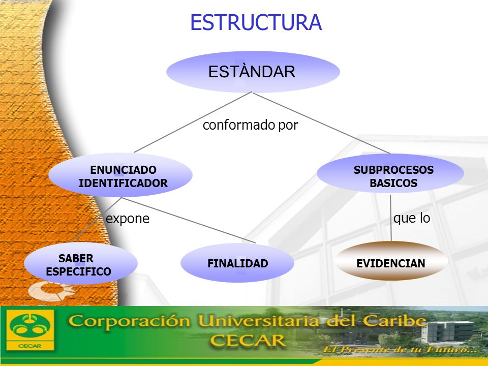 www.ceat.cl La estructura de los estándares de competencias en lenguaje De acuerdo con los referentes expuestos hasta aquí, el lector encontrará que los estándares han sido definidos por grupos de grados (1 a 3, 4 a 5, 6 a 7, 8 a 9 y 10 a 11) a partir de cinco factores que identifican las columnas de los cuadros.