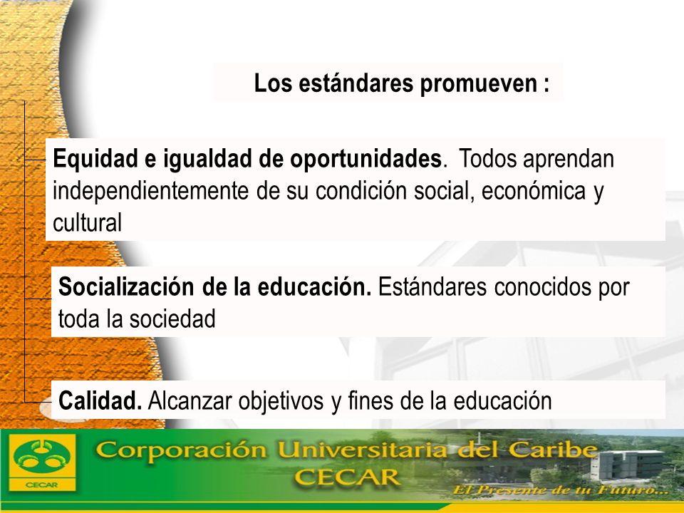 www.ceat.cl Los estándares promueven : Socialización de la educación. Estándares conocidos por toda la sociedad Calidad. Alcanzar objetivos y fines de