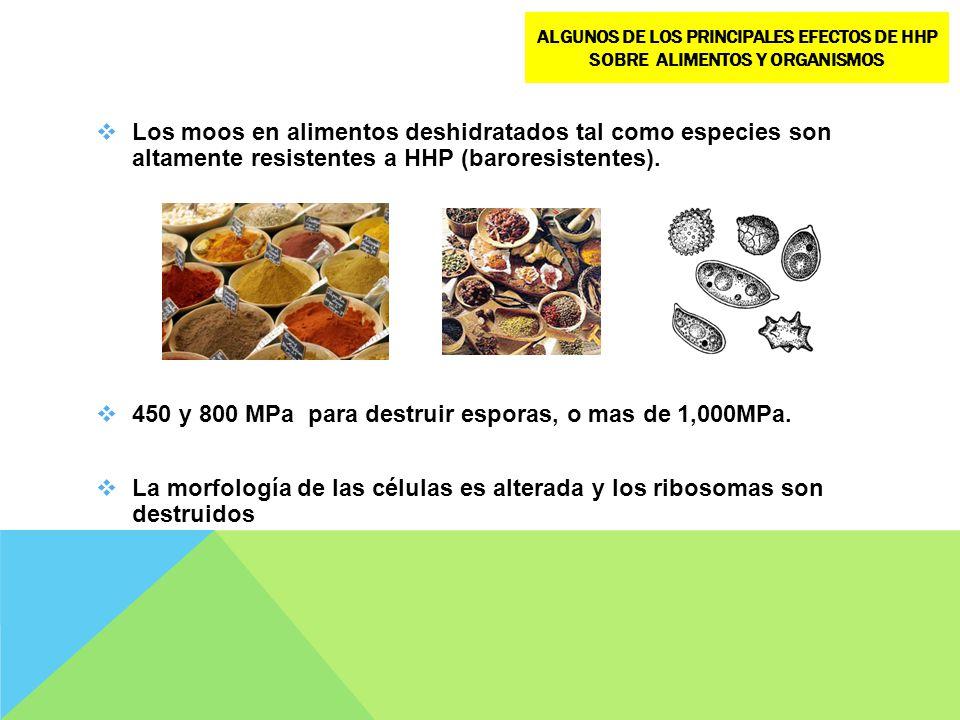 Los moos en alimentos deshidratados tal como especies son altamente resistentes a HHP (baroresistentes). 450 y 800 MPa para destruir esporas, o mas de