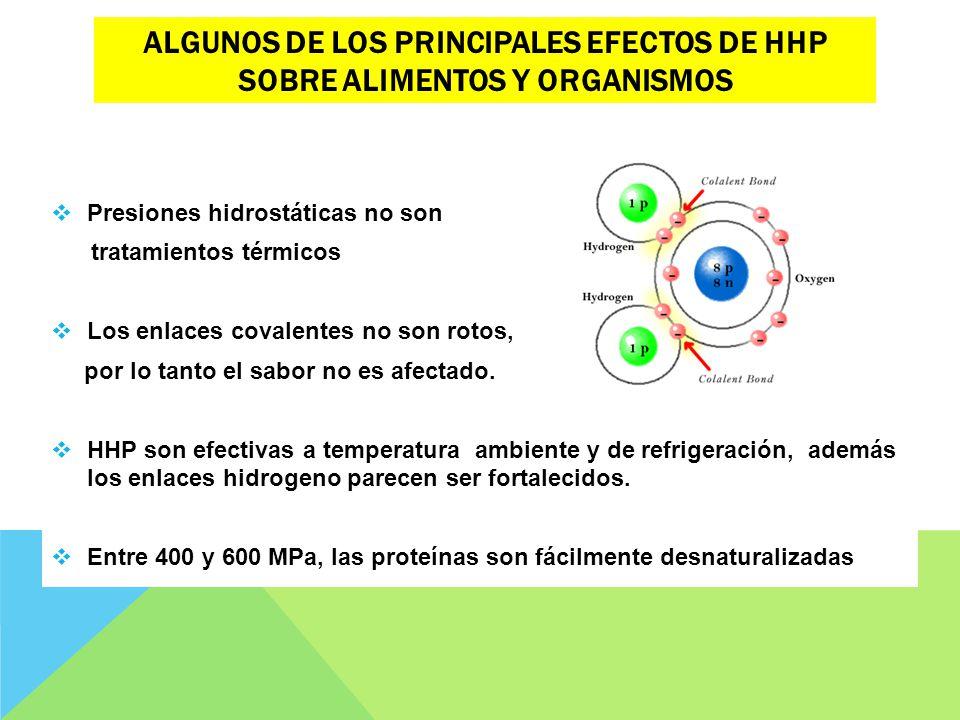 ALGUNOS DE LOS PRINCIPALES EFECTOS DE HHP SOBRE ALIMENTOS Y ORGANISMOS Presiones hidrostáticas no son tratamientos térmicos Los enlaces covalentes no