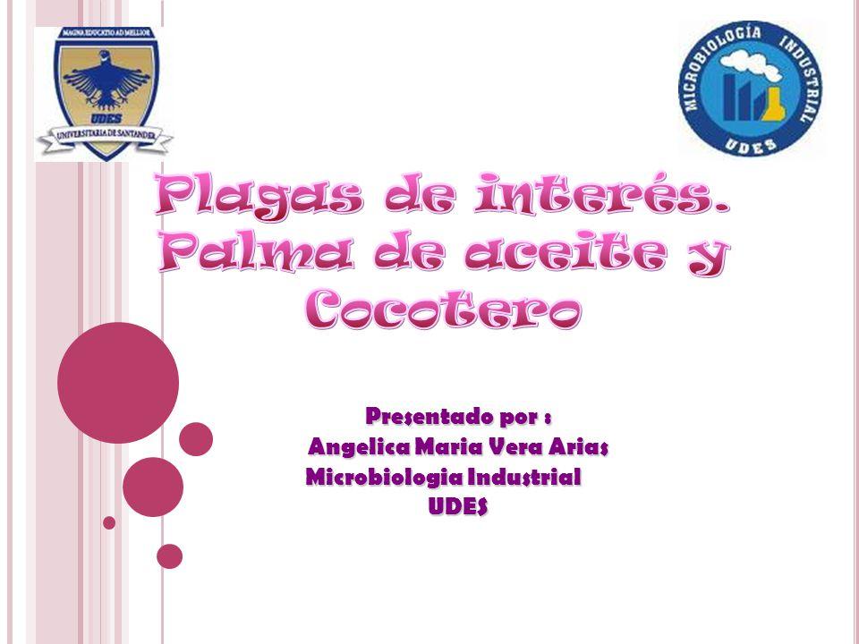Presentado por : Presentado por : Angelica Maria Vera Arias Angelica Maria Vera Arias Microbiologia Industrial Microbiologia Industrial UDES UDES