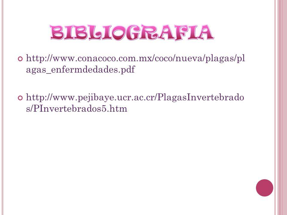 http://www.conacoco.com.mx/coco/nueva/plagas/pl agas_enfermdedades.pdf http://www.pejibaye.ucr.ac.cr/PlagasInvertebrado s/PInvertebrados5.htm
