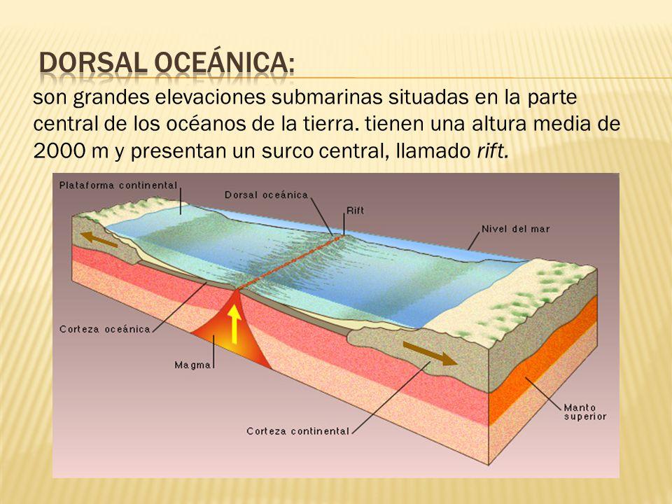 son grandes elevaciones submarinas situadas en la parte central de los océanos de la tierra.