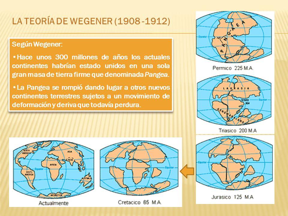 LA TEORÍA DE WEGENER (1908 -1912) Según Wegener: Hace unos 300 millones de años los actuales continentes habrían estado unidos en una sola gran masa de tierra firme que denominada Pangea.