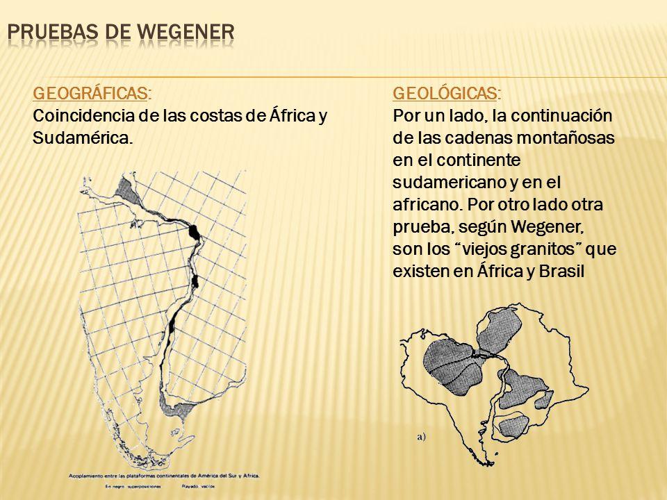 GEOGRÁFICAS: Coincidencia de las costas de África y Sudamérica.