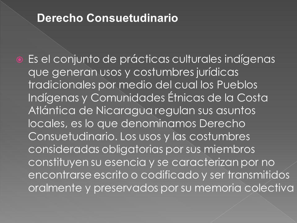 Es el conjunto de prácticas culturales indígenas que generan usos y costumbres jurídicas tradicionales por medio del cual los Pueblos Indígenas y Comu