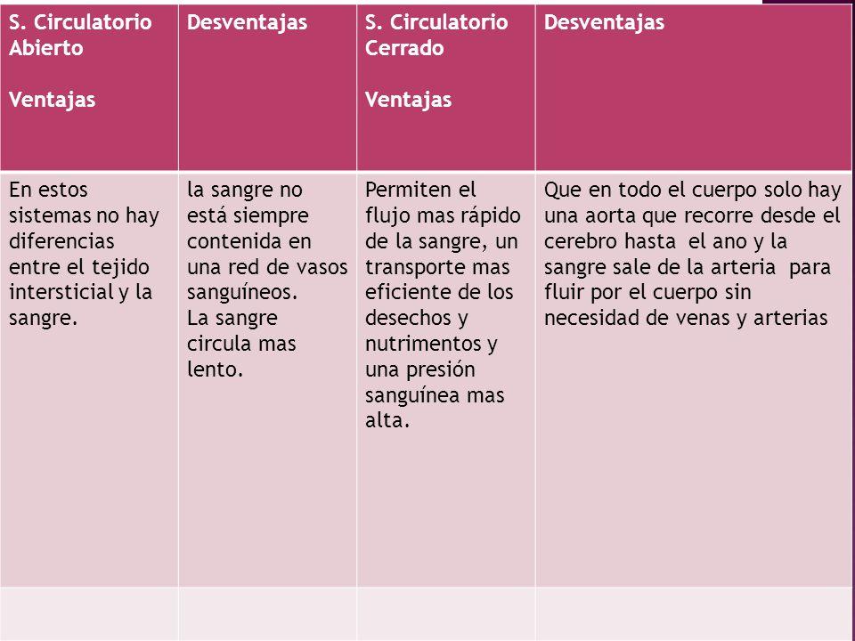 S. Circulatorio Abierto Ventajas DesventajasS. Circulatorio Cerrado Ventajas Desventajas En estos sistemas no hay diferencias entre el tejido intersti