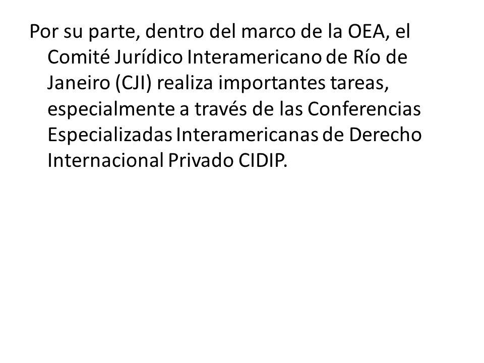Por su parte, dentro del marco de la OEA, el Comité Jurídico Interamericano de Río de Janeiro (CJI) realiza importantes tareas, especialmente a través