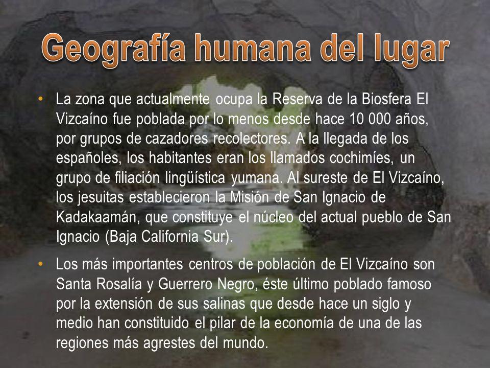 Museo Regional de Mulegé, Misión de San Ignacio de Loyola, Guerrero Negro, Ciudad de Santa Rosalia, Laguna de San Ignacio, Laguna Ojo de Liebre, El