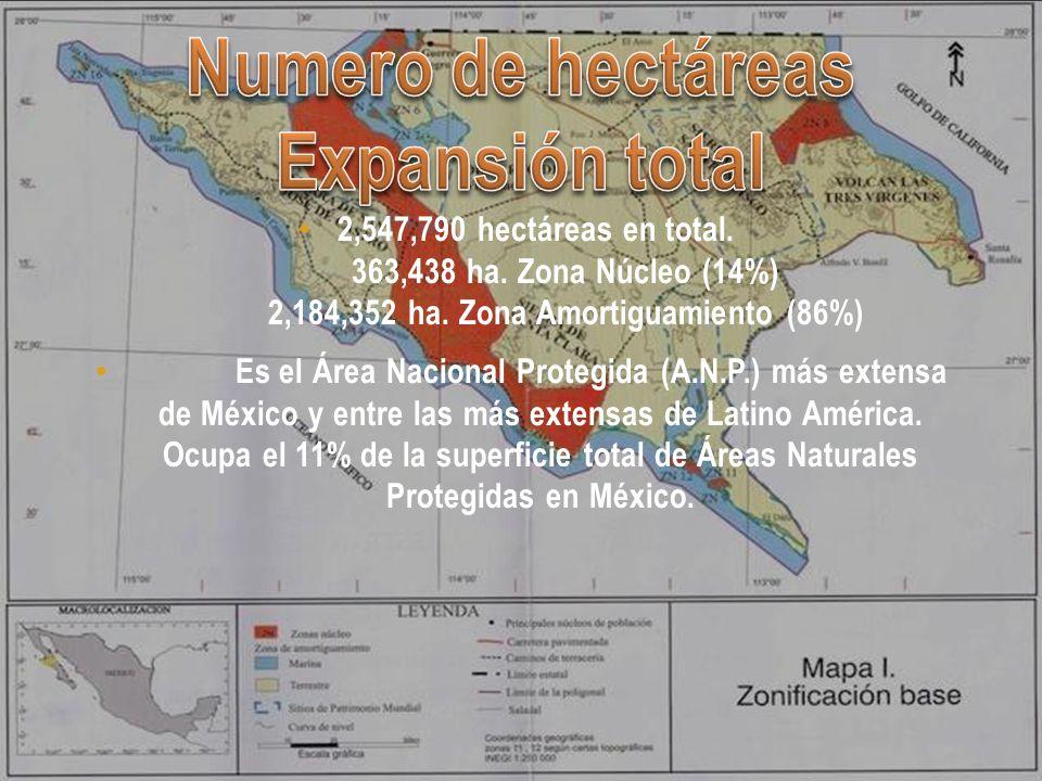 La zona que actualmente ocupa la Reserva de la Biosfera El Vizcaíno fue poblada por lo menos desde hace 10 000 años, por grupos de cazadores recolectores.