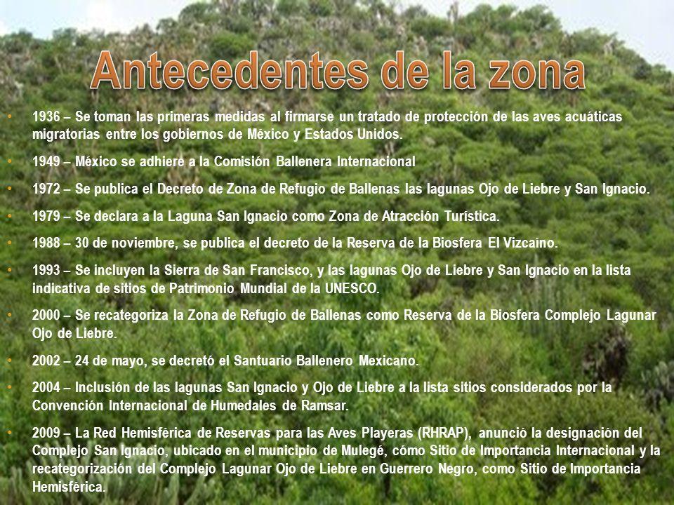 2,547,790 hectáreas en total.363,438 ha. Zona Núcleo (14%) 2,184,352 ha.