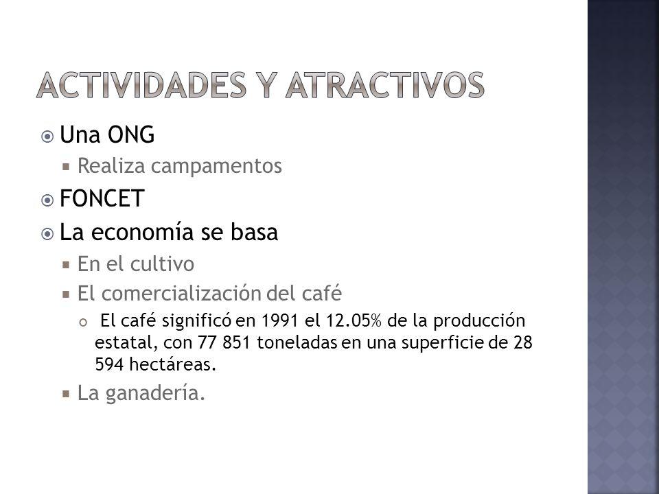Una ONG Realiza campamentos FONCET La economía se basa En el cultivo El comercialización del café El café significó en 1991 el 12.05% de la producción